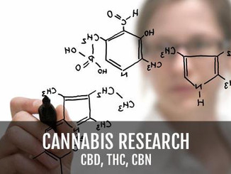 The Conundrum of Cannabis Research