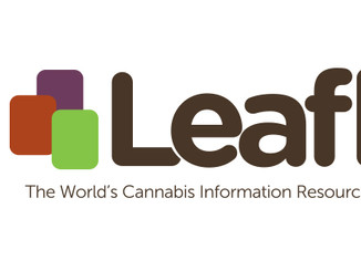 Media, another ancillary market within Cannabis poised for success