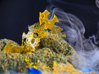 More on THC: Concerns about Potency