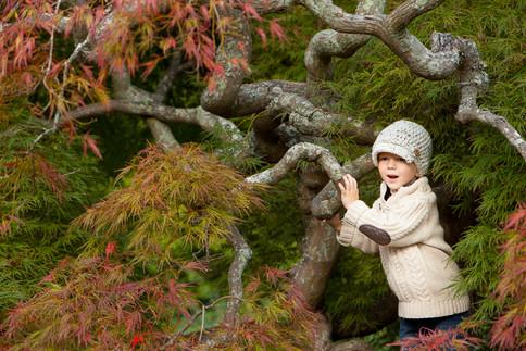 Asheville_Children_Photographer_-103.JPG