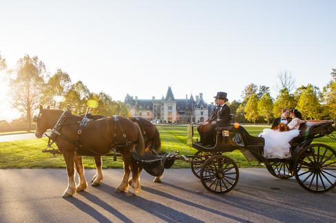 Wedding Carriage Ride at Biltmore