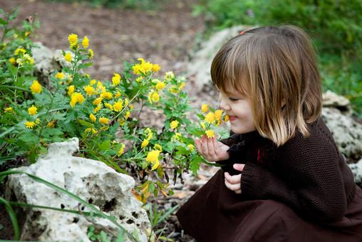 Asheville_Children_Photographer_-044.JPG