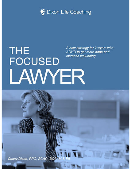 The Focused Lawyer eBook