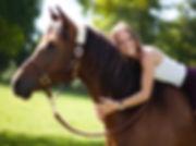 Pferdeosteopathie, Osteopathie am Pferd, Kathrin Butz, Rhenland-Pfalz