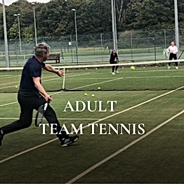 Adult team tennis at Brentwood Hard Court club