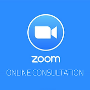 Zoom business marketing consultation, Essex