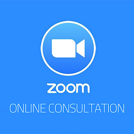 zoom consultation.png