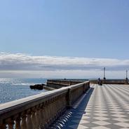 Livorno Modigliani & seppie