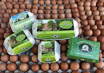 Nessendorfer Eier.jpg