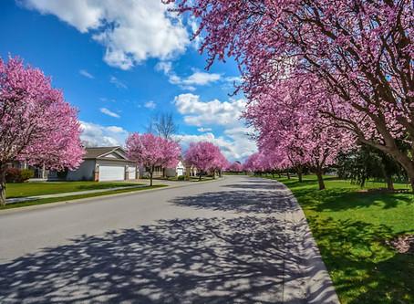 Spring Property Health Check