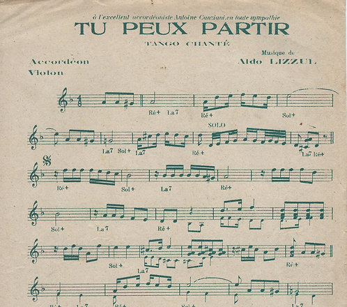 Aldo Lizzul | Tu peux partir | Accordeon | Violon