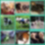 June's crew.jpg
