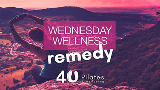 Wellness Wednesday - All about Wheat