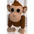 monkey_pet.png