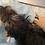 Thumbnail: Dog Charm Bracelet