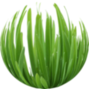 Grass sphere.png