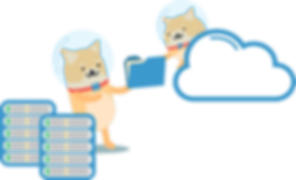 NPSG_cloud backup (1).png