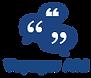 VoyagerAid_logo.png