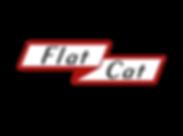 Flat Cat-01.png