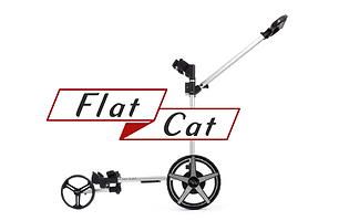 EXPO Area Flat Cat-01.png