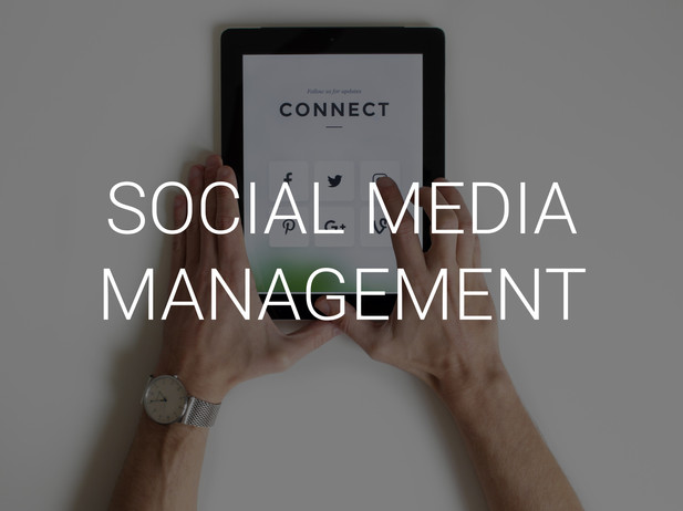 We're masters of implementing effective strategies for your social media. Our expertise will help you expand your brand awareness and precisely target your niche audience.