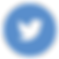 twitter_circle_color-512.png
