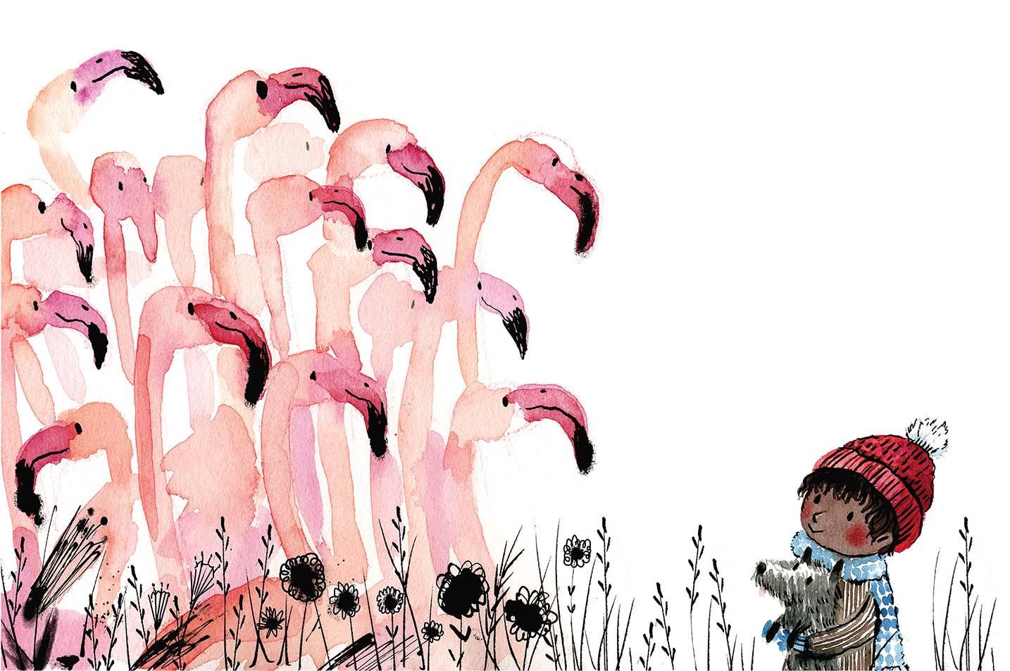 Flamans / Flamingos