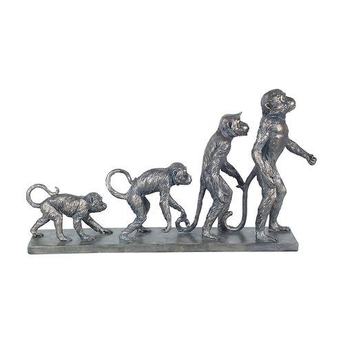 Figura evolución monos