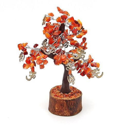 Árbol Carneola OM