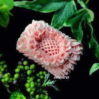 meica-soapcarving_2.jpg