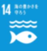 SDGs_海の豊かさを守ろう