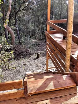 Escalier_forêt