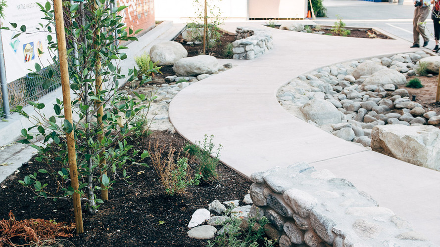 Wilshire Park Elementary Rain Garden
