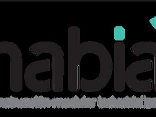 "Goiketxe lanza Habia. ""Construcción modular industrializada""."