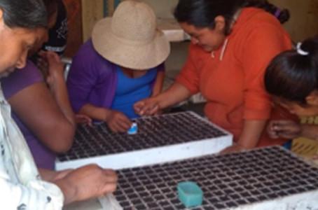Agroecología y biofertilizantes contra la pobreza rural