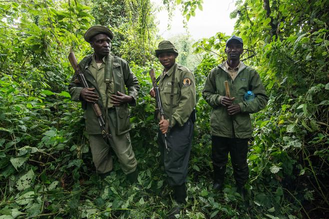 Kyle de Nobrega Virunga National Park (3