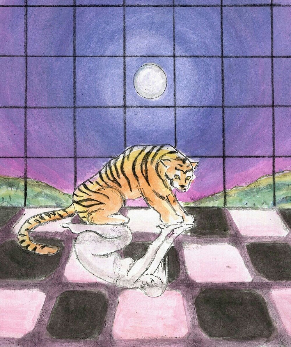 Tiger crouching with human figure reflection