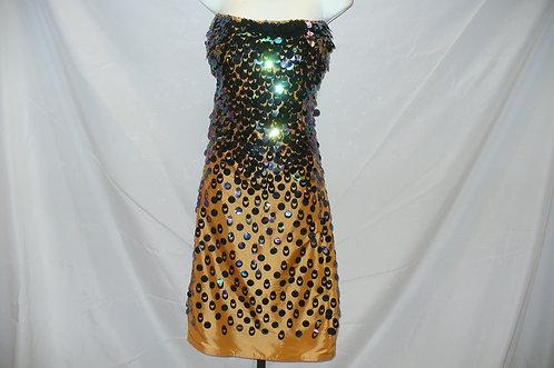 Jewel Tina Turner dress