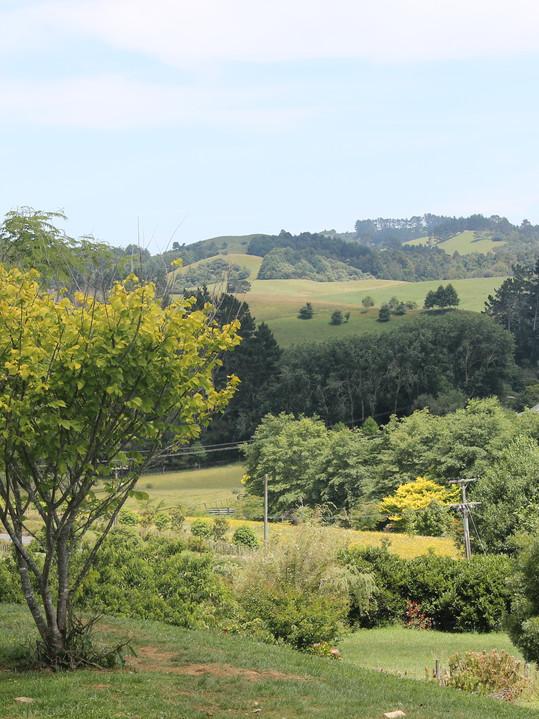 Views Araimu Gardens