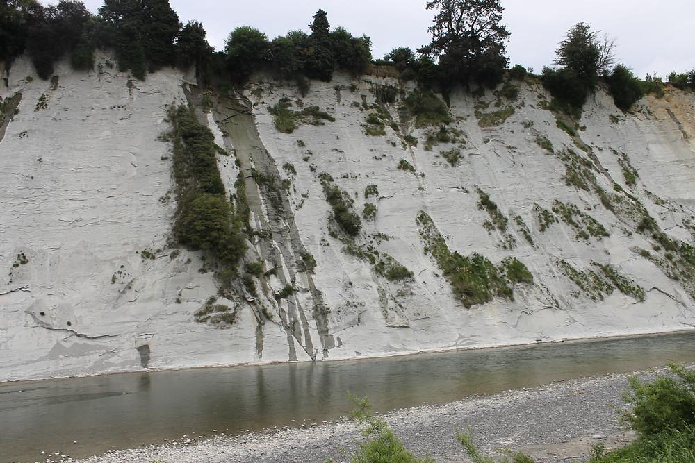 Maungaweka white cliffs