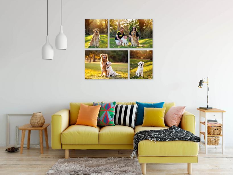 gallery-swiftgalleries_2x16x20_2x20x30_e
