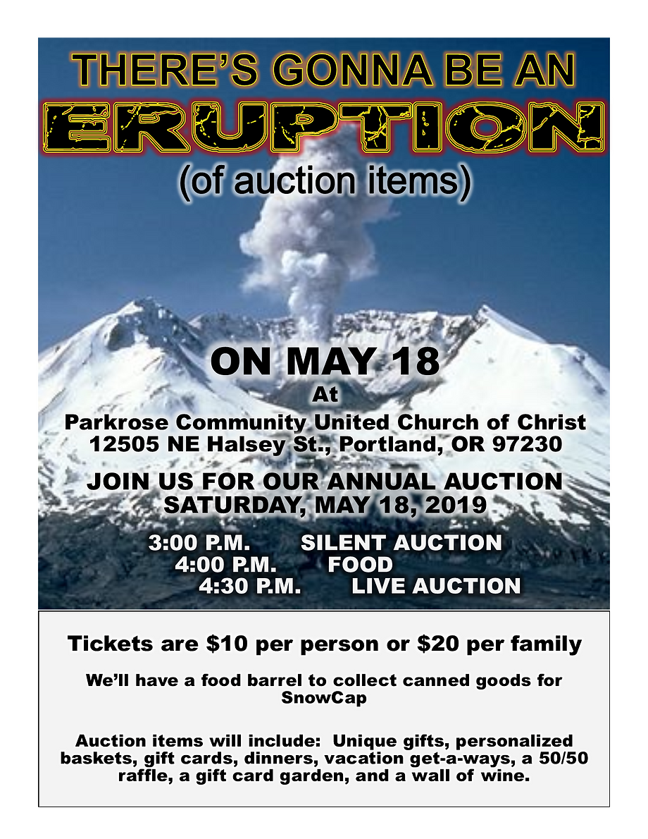 Auction Flyer Final.png