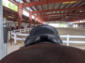 Photo of rear of saddle.jpg