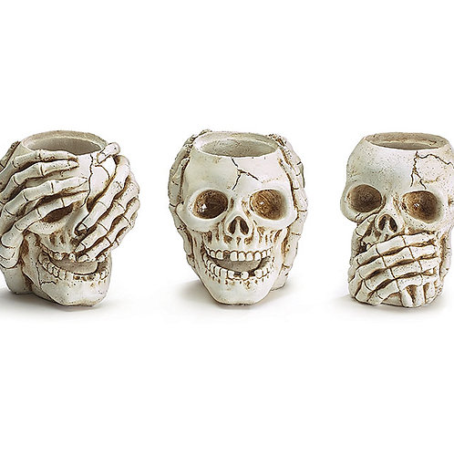 Set of 3 Resin Skull Containers!