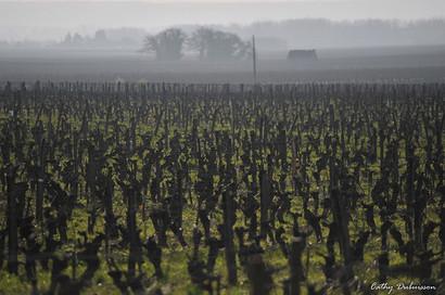 Photographie Road-trip - Touraine