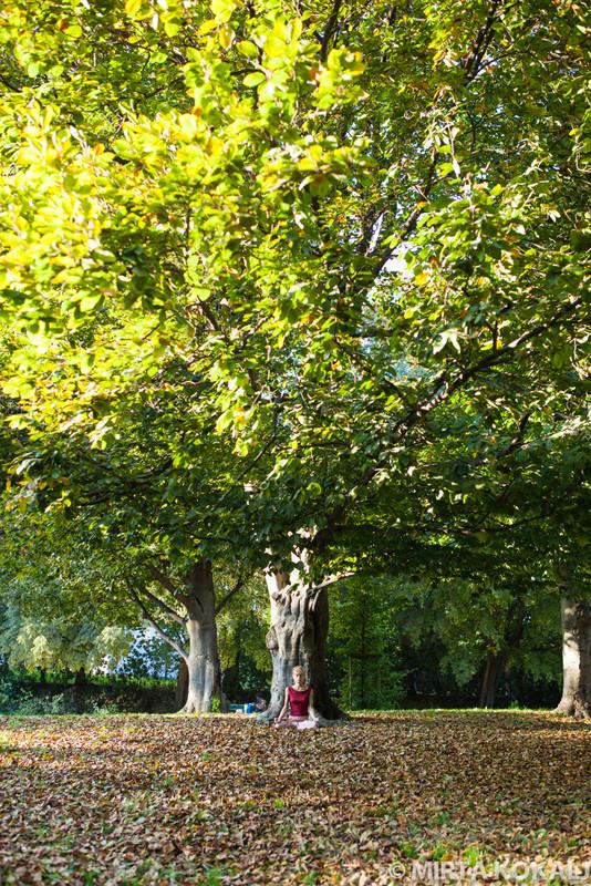 Seminario yoga: corpo, respiro e mente(sabato 27 ottobre)