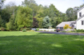 Lawn Maintenance and Treatment