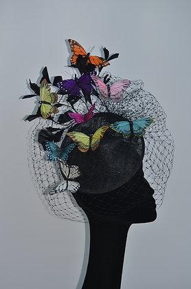 """'butterflies"""""""