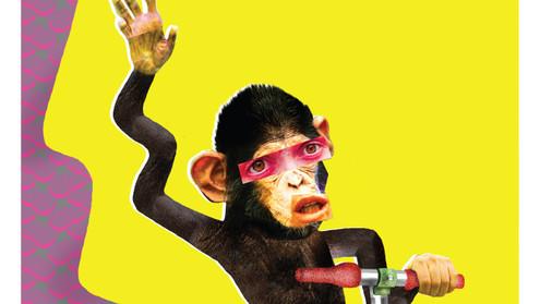 Wimpy Chimpy's Brain Competition