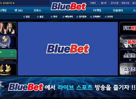먹튀검증 토토사이트 블루벳 정보 리뷰
